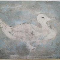 Pato azul
