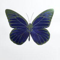 The Souls I – Westminster Blue / Blind Impression / Leaf Green
