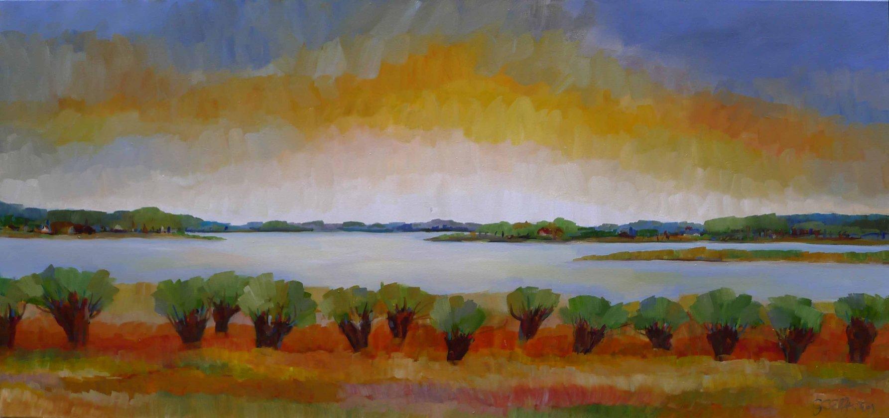 Waterland met wilgen