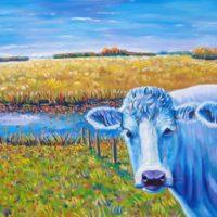 Koeien van Lauwersoog I