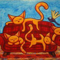 Kattenbank