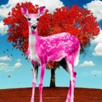 Oh Deer Valentine – Bambi Pink