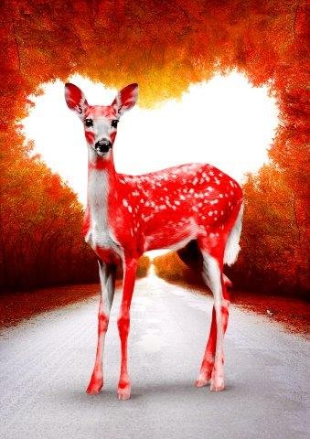 Oh Deer Valentine – Bambi Red