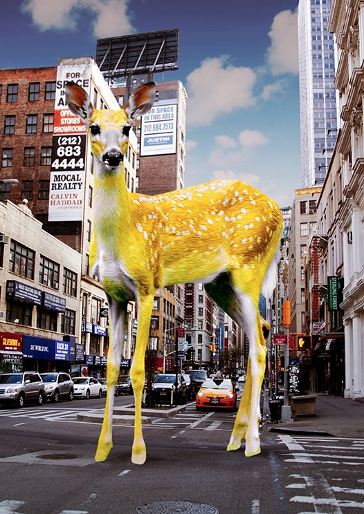 Yellow bambi