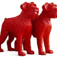 Clooned Red dogs