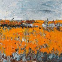 Oranje Bloemenveld