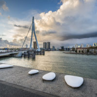 Rotterdam Stones and Water