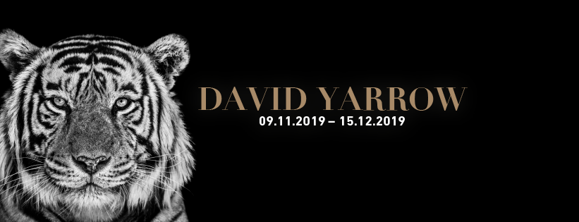 David Yarrow Booksigning