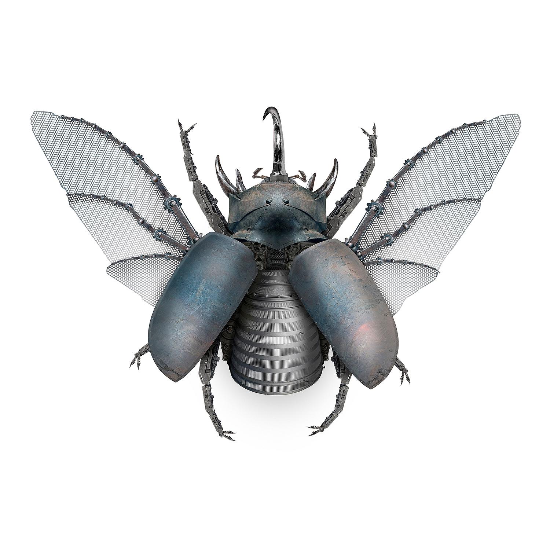 5 Horned Rhino Beetle-male