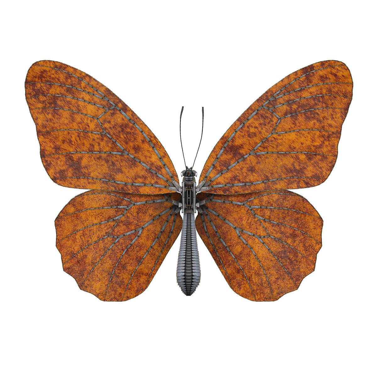 Butterfly I – orange