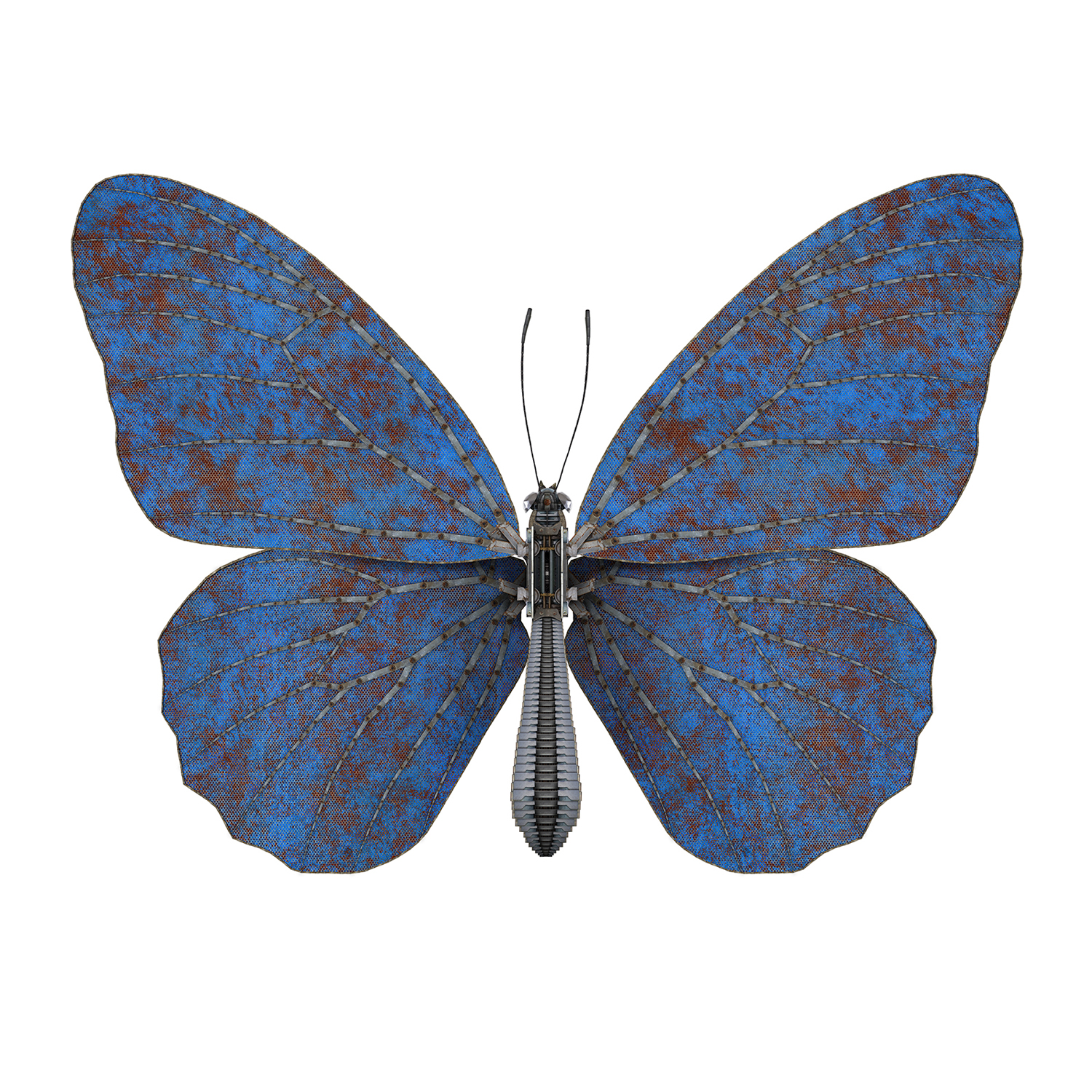 Butterfly II – blue