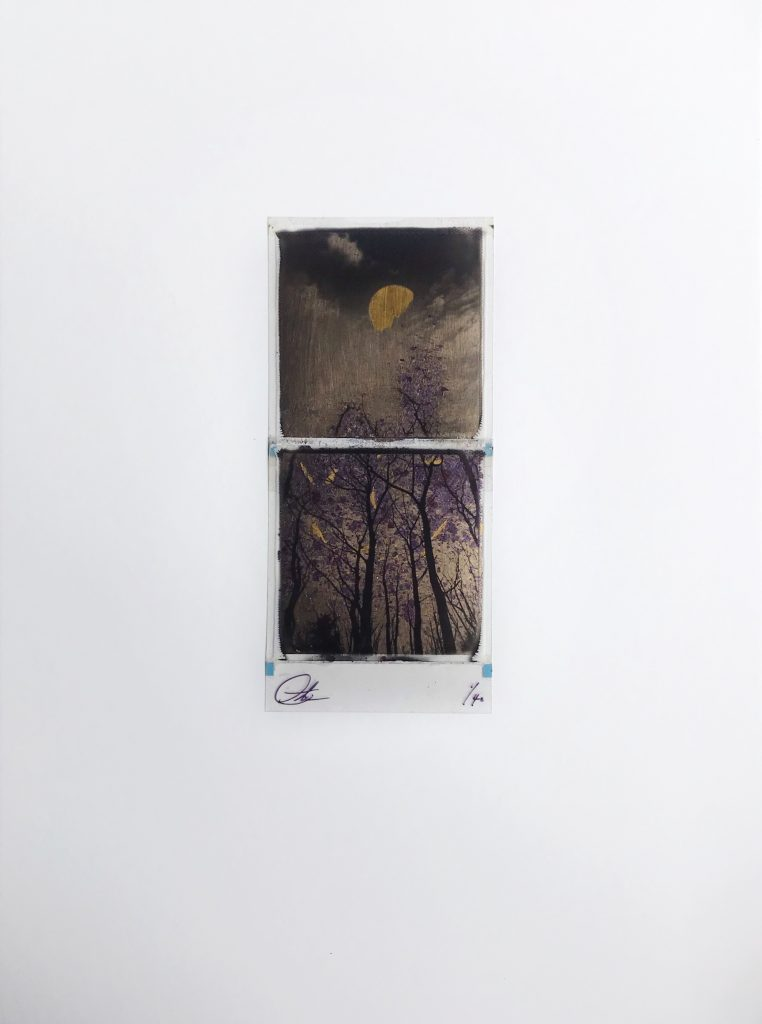 Splitting of the light – Champagne / Purple