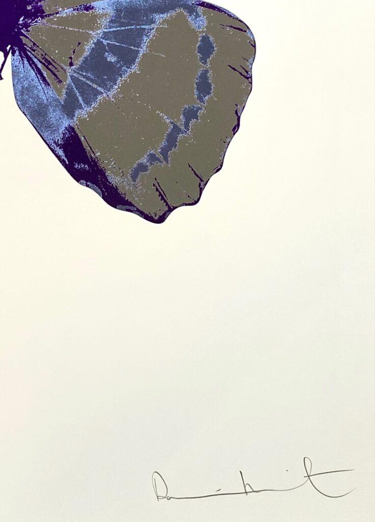 The Souls III Silver Gloss – Cornflower Blue – Imperial Purple OC7908