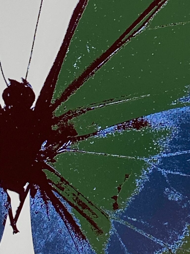 The Souls III Leaf Green – Frost Blue – Burgundy OC7914