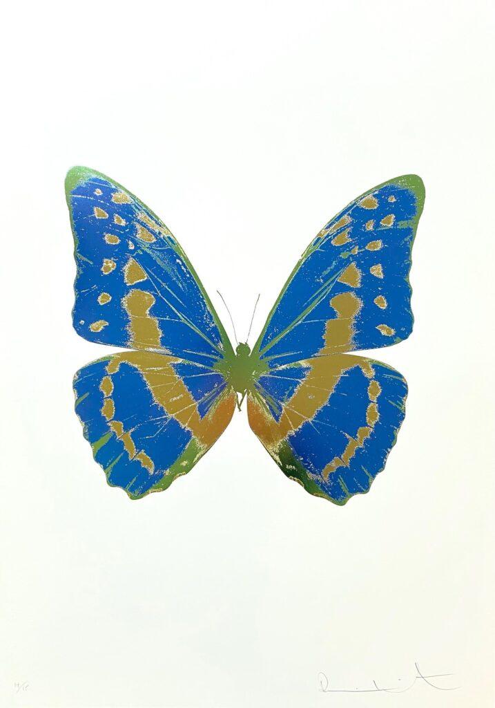 The Souls III Frost Blue – Sunset Gold – Leaf Green OC7938