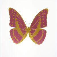 The Souls III – OC7924 Loganberry Pink – Oriental Gold – Oriental Gold