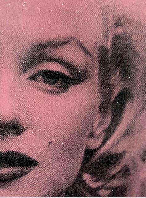 Marilyn Hollywood – Superstar Pink