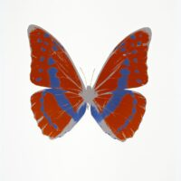 The Souls III Prairie Copper -Frost Blue – Silver gloss OC7917