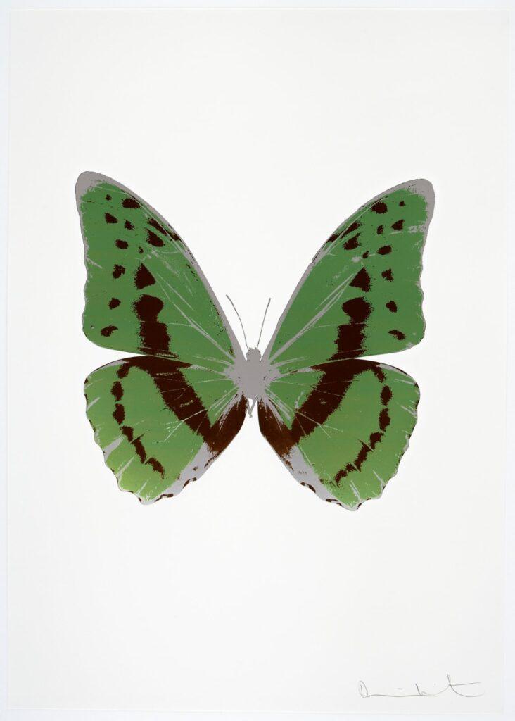 The Souls III Leaf Green – Chocolate – Silver Gloss OC7947